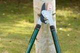Set - Teleskopické nůžky na větve s kombinovaným chodem a skládací prořezávací pilka