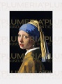 Reprodukce obrazu The Girl a Pearl Earring Jan Vermeer