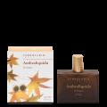 Dámský parfém Ambraliquida 50ml