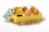 Plechový držák na 6 ks vajec