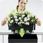 LECHUZA BALCONERA COTTAGE, lechuza,květináč, květináče, truhlík, truhlíky, balkon, zahrada, květiny